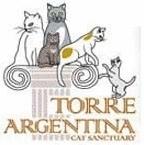Colonia Felina di Torre Argentina Roma