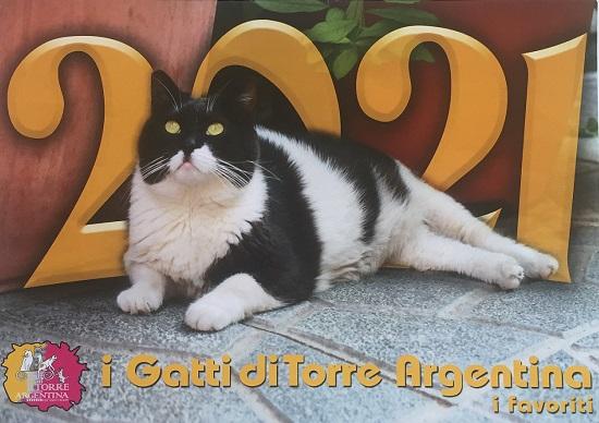 Calendario 2021 Piu Belli Gatti di Roma Colonia felina Largo di Torre Argentina
